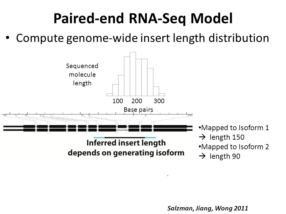 Is exon scrambling present in rRNA-depleted RNA.