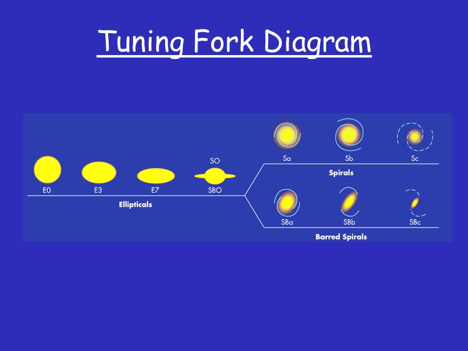 Tuning Fork Diagram