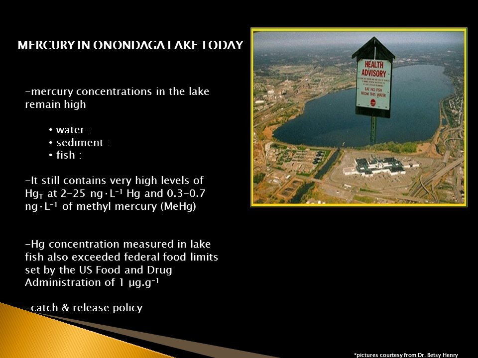 MERCURY IN ONONDAGA LAKE TODAY....All roads lead to SEDIMENT as the possible culprit *pictures courtesy from Dr.