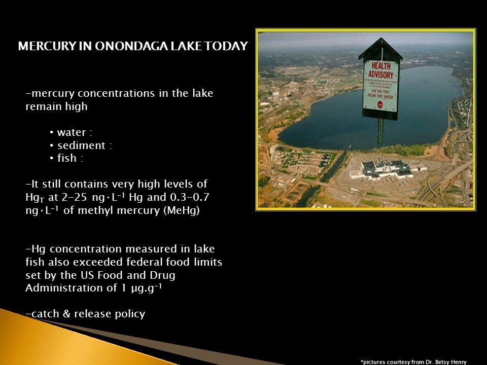 Sedimnt Management Units (SMU) in Onondaga Lake Q QUESTIONS?