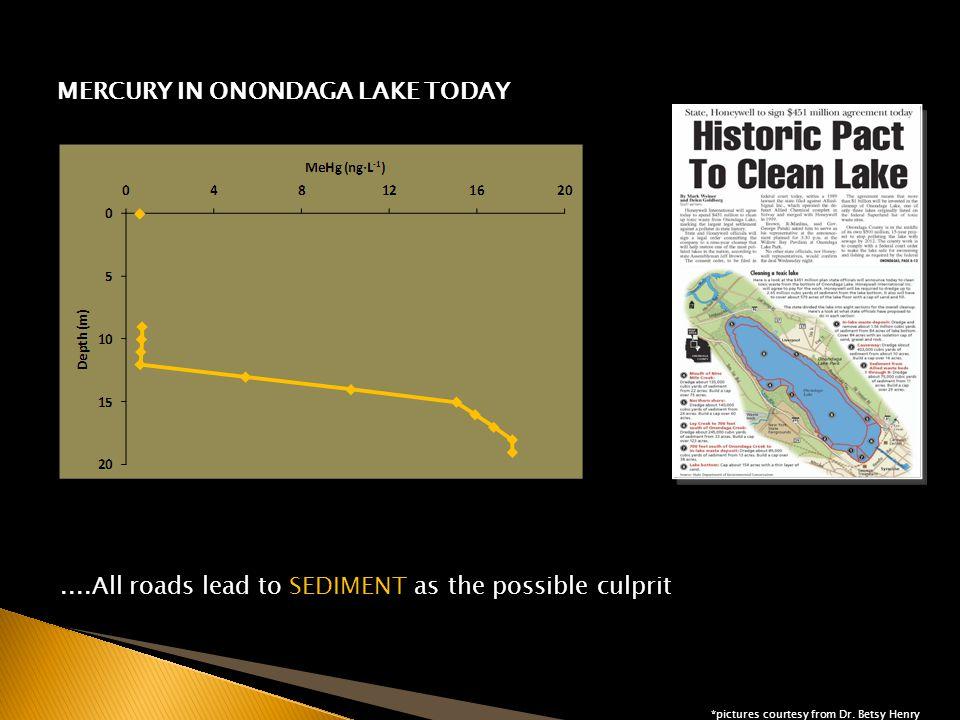 Sedimnt Management Units (SMU) in Onondaga Lake THEORY AND OPERATION: THEORY AND OPERATION: MASS BALANCE EXPERIMENTAL SET-UP J Q C ss