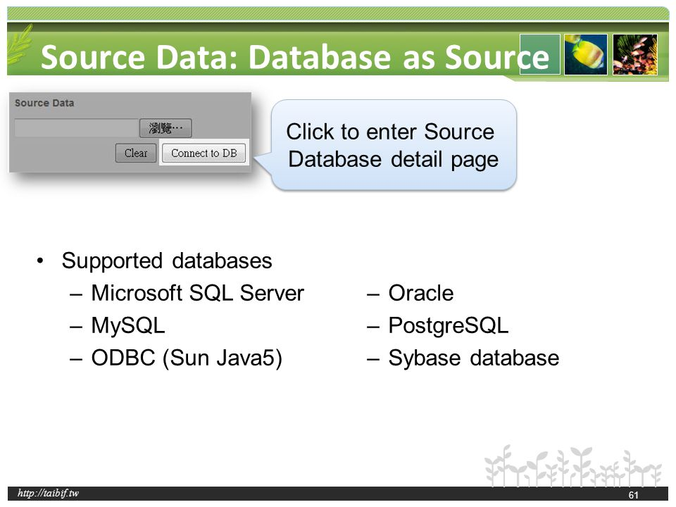 http://taibif.tw Source Data: Database as Source Supported databases –Microsoft SQL Server –MySQL –ODBC (Sun Java5) –Oracle –PostgreSQL –Sybase database Click to enter Source Database detail page 61