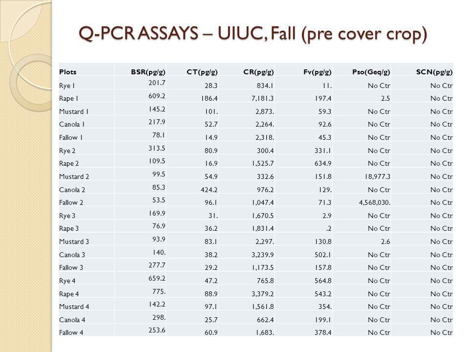 Q-PCR ASSAYS – UIUC, Fall (pre cover crop) PlotsBSR(pg/g)CT(pg/g)CR(pg/g)Fv(pg/g)Pso(Geq/g)SCN(pg/g) Rye 1 201.7 28.3 834.1 11.No Ctr Rape 1 609.2 186.47,181.3 197.4 2.5No Ctr Mustard 1 145.2 101.2,873.