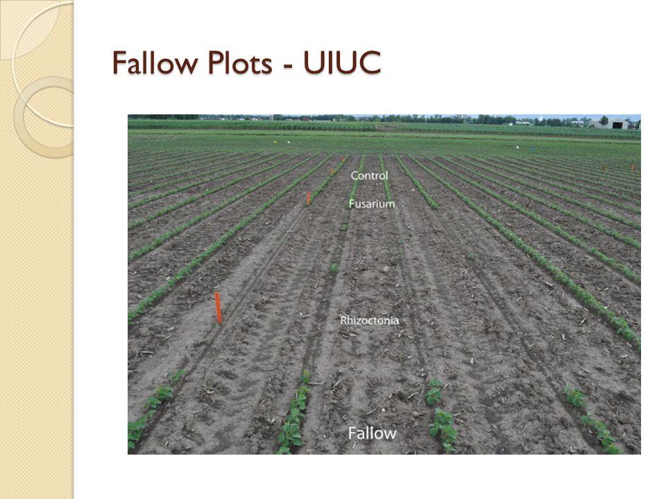 Fallow Plots - UIUC