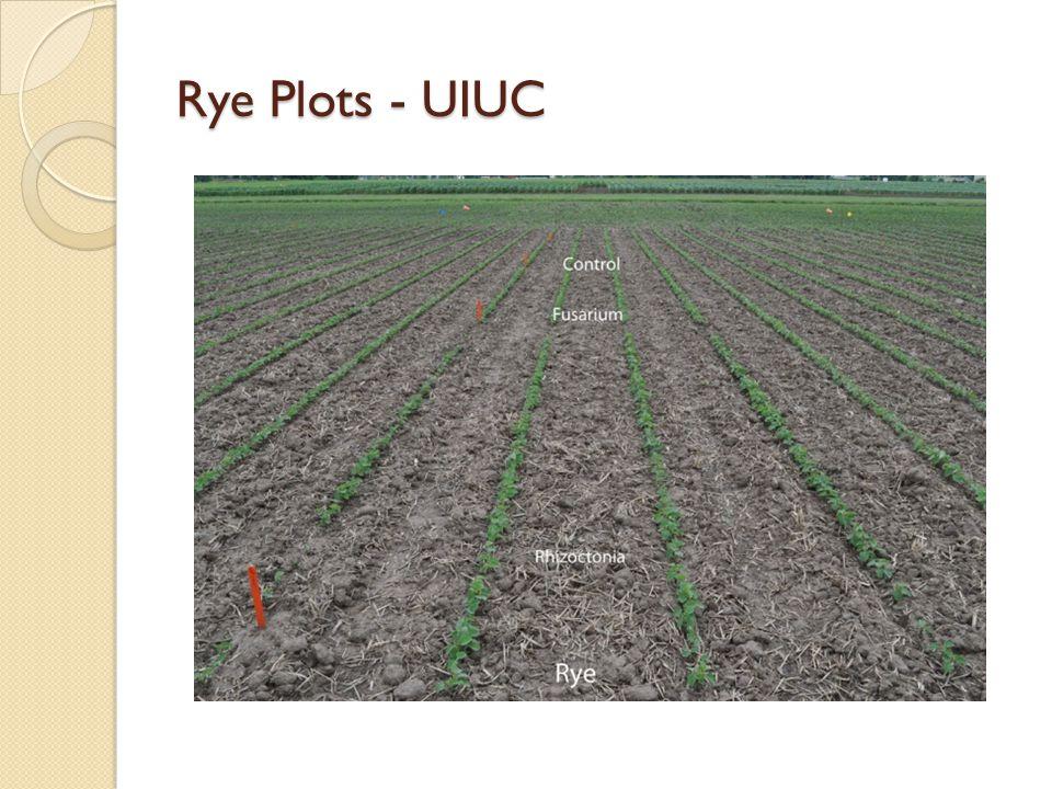 Rye Plots - UIUC