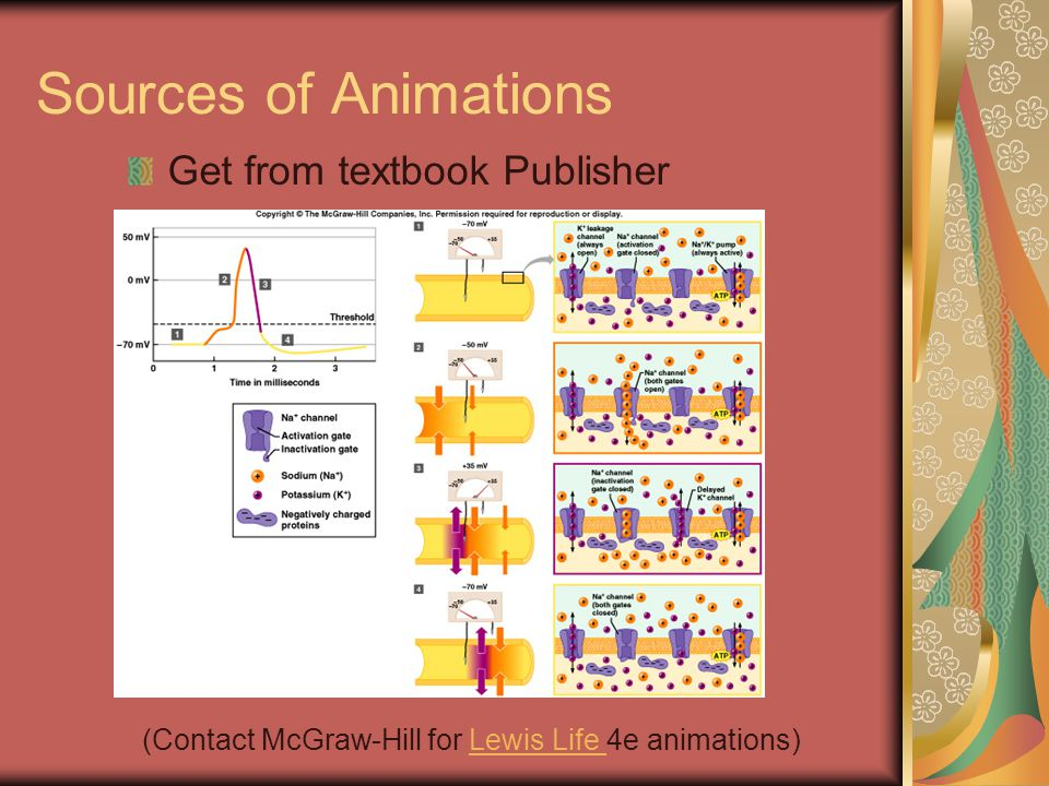 Sources of Animations Make your own GIF animator GIF animator ($45) – animated.gif Fireworks Fireworks ($99) – animated.gif Flash Flash ($99) – flash.