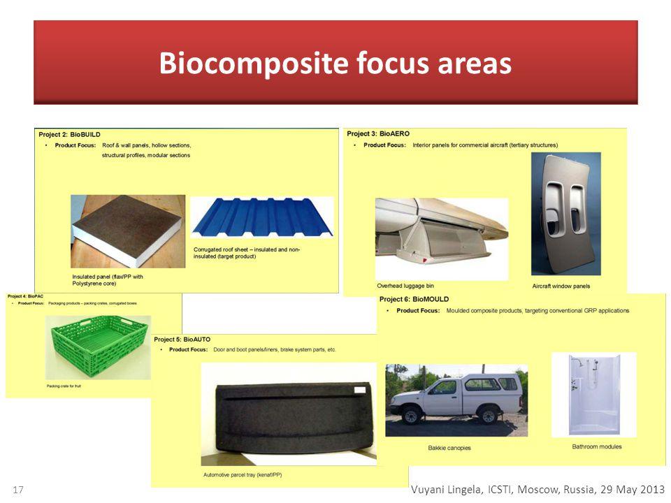 Vuyani Lingela, ICSTI, Moscow, Russia, 29 May 2013 Biocomposite focus areas 17