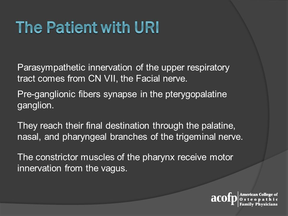 Parasympathetic innervation of the upper respiratory tract comes from CN VII, the Facial nerve.