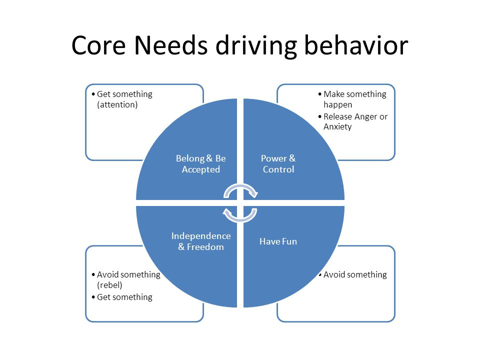 Core Needs driving behavior Avoid somethingAvoid something (rebel) Get something Make something happen Release Anger or Anxiety Get something (attention) Belong & Be Accepted Power & Control Have Fun Independence & Freedom