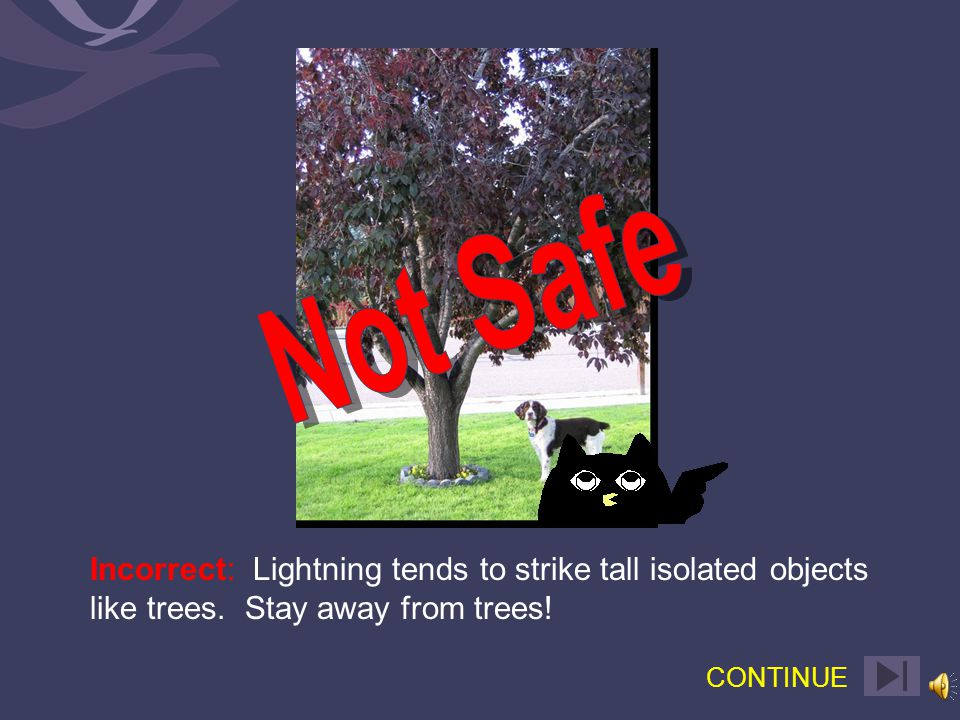 Correct: Lightning tends to strike tall isolated objects like trees. Stay away from trees! CONTINUE