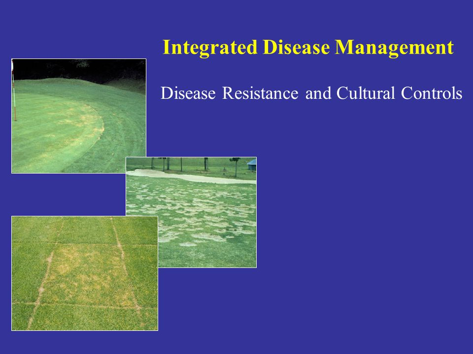Integrated Disease Management Disease Resistance and Cultural Controls