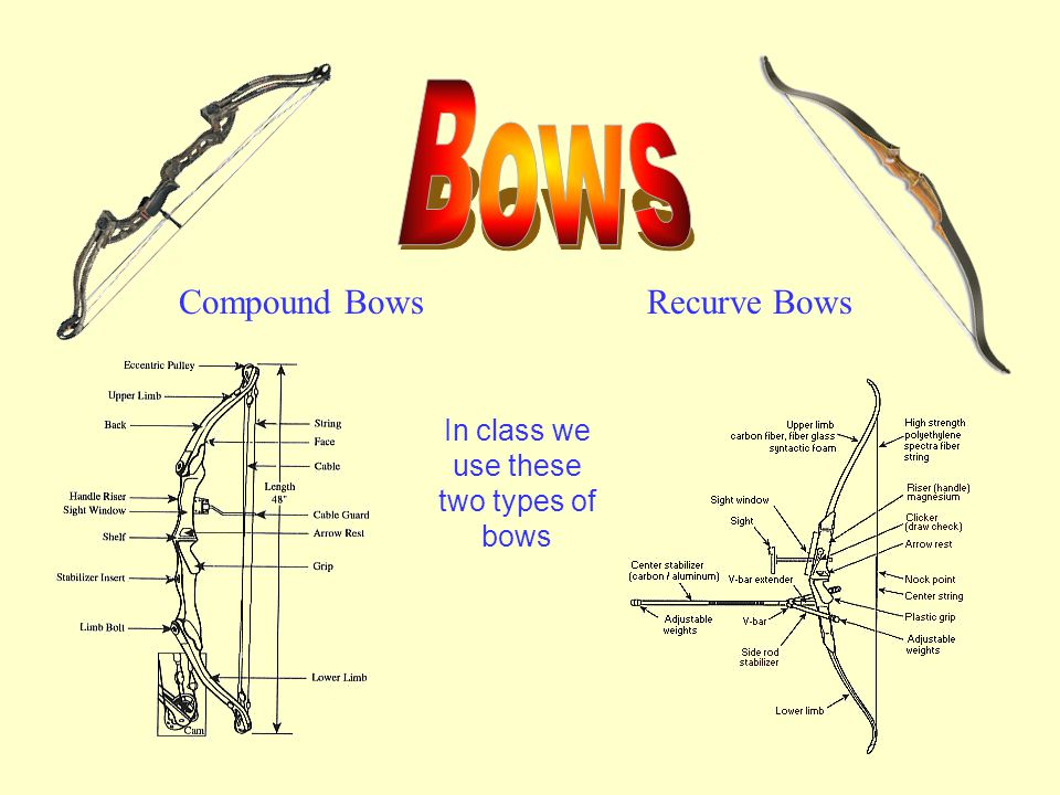Compound BowsRecurve Bows In class we use these two types of bows