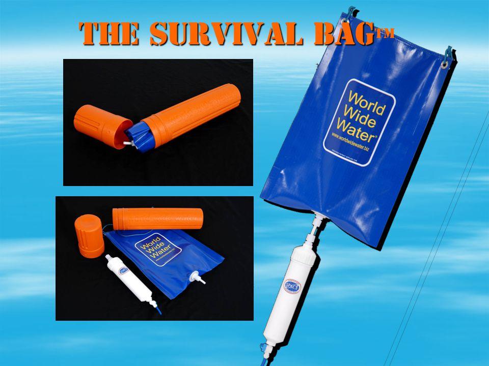 THE SURVIVAL BAG THE SURVIVAL BAG