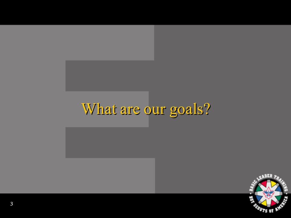 3 What are our goals?