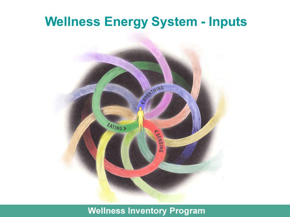 Wellness Energy System - Inputs