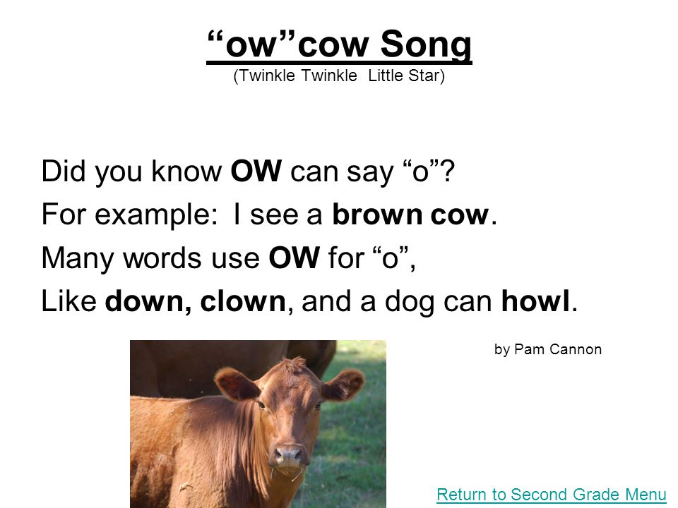 owcow Song (Twinkle Twinkle Little Star) Did you know OW can say o? For example: I see a brown cow. Many words use OW for o, Like down, clown, and a d