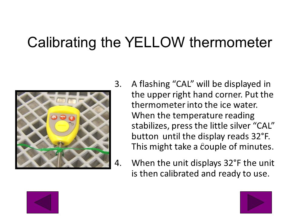 3.A flashing CAL will be displayed in the upper right hand corner. Put the thermometer into the ice water. When the temperature reading stabilizes, pr