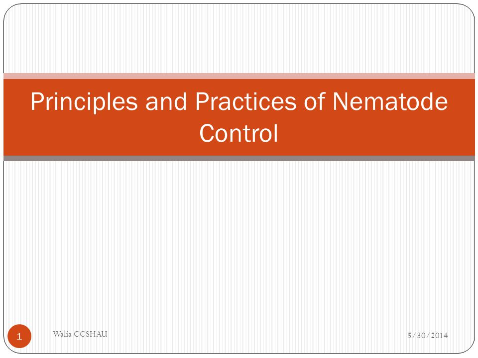 Chemical control Involves use of Nematicides or Nematocides Pre-requisites When Pi is very high Crop is valuable Quick results are warranted Generally discouraged because of Residue problems in edible parts Environmental pollution Toxicity to non-target organisms Resurgence of pest problems Cost considerations 5/30/2014 Walia CCSHAU 12