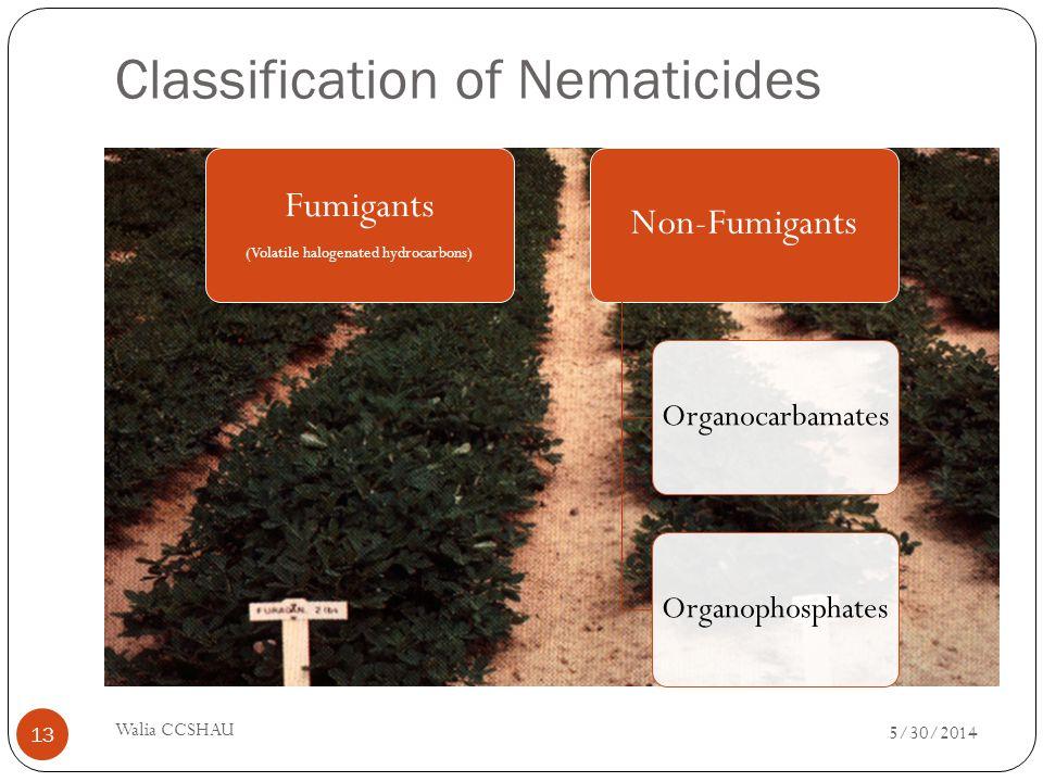 Classification of Nematicides Fumigants (Volatile halogenated hydrocarbons) Non-Fumigants OrganocarbamatesOrganophosphates 5/30/2014 Walia CCSHAU 13