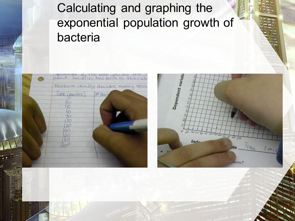 Calculating and graphing the exponential population growth of bacteria