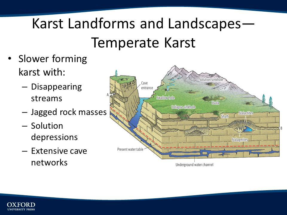 Karst Landforms and Landscapes Temperate Karst Slower forming karst with: – Disappearing streams – Jagged rock masses – Solution depressions – Extensi