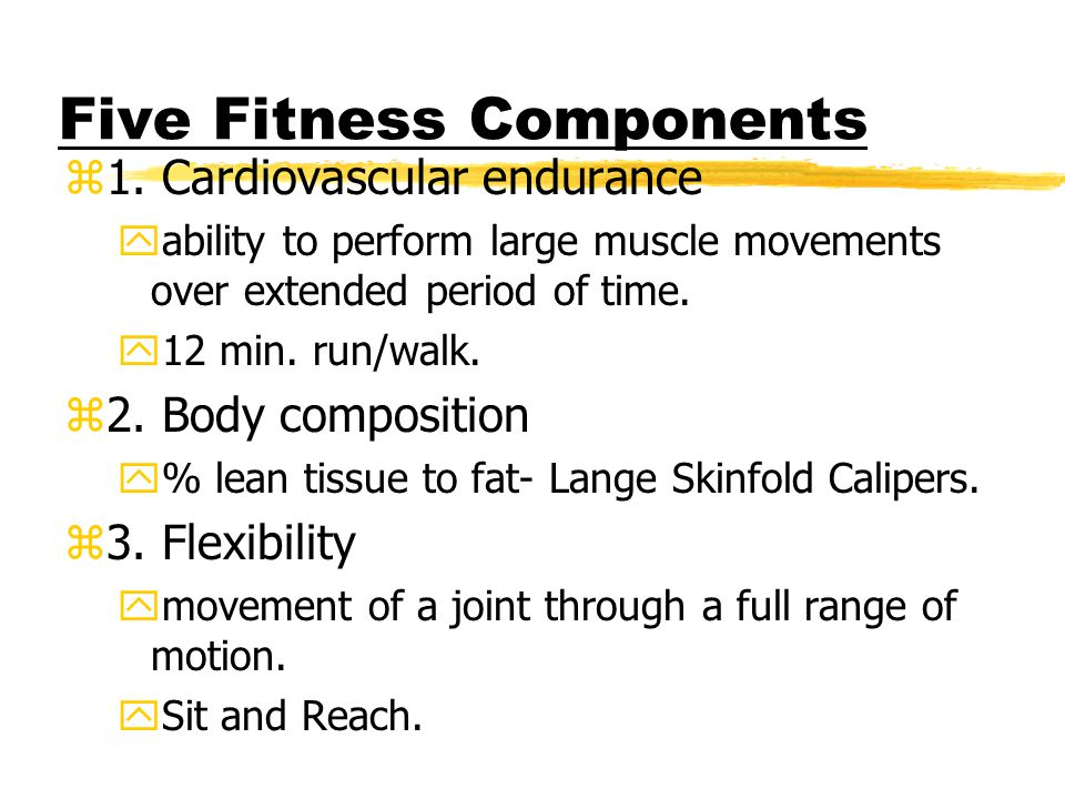 Five Fitness Components z1.