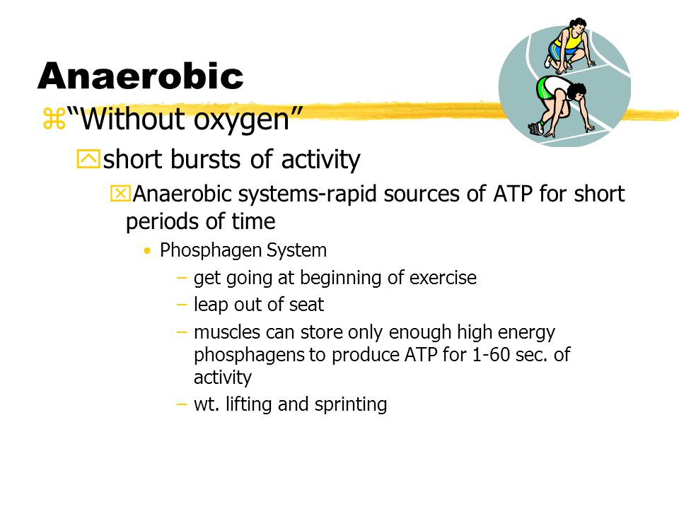 Anaerobic zWithout oxygen yshort bursts of activity xAnaerobic systems-rapid sources of ATP for short periods of time Phosphagen System –get going at beginning of exercise –leap out of seat –muscles can store only enough high energy phosphagens to produce ATP for 1-60 sec.