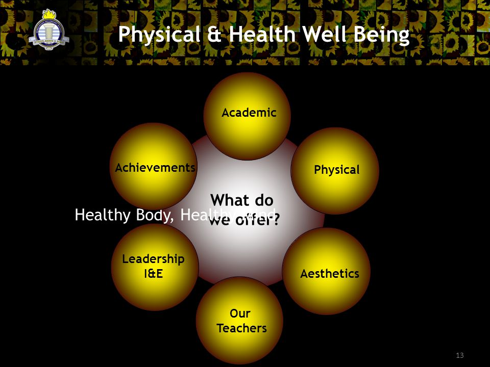 13 Physical & Health Well Being What do we offer.
