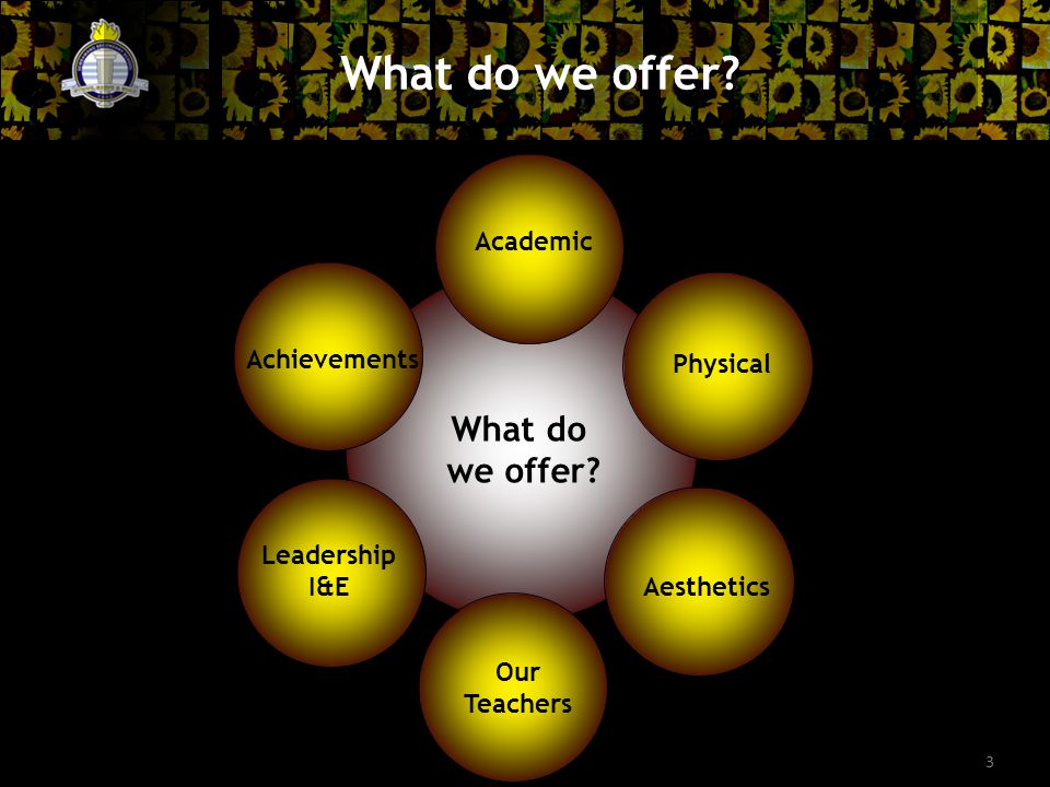 3 What do we offer. What do we offer.