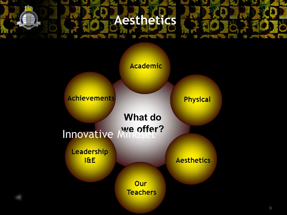9 Aesthetics What do we offer.