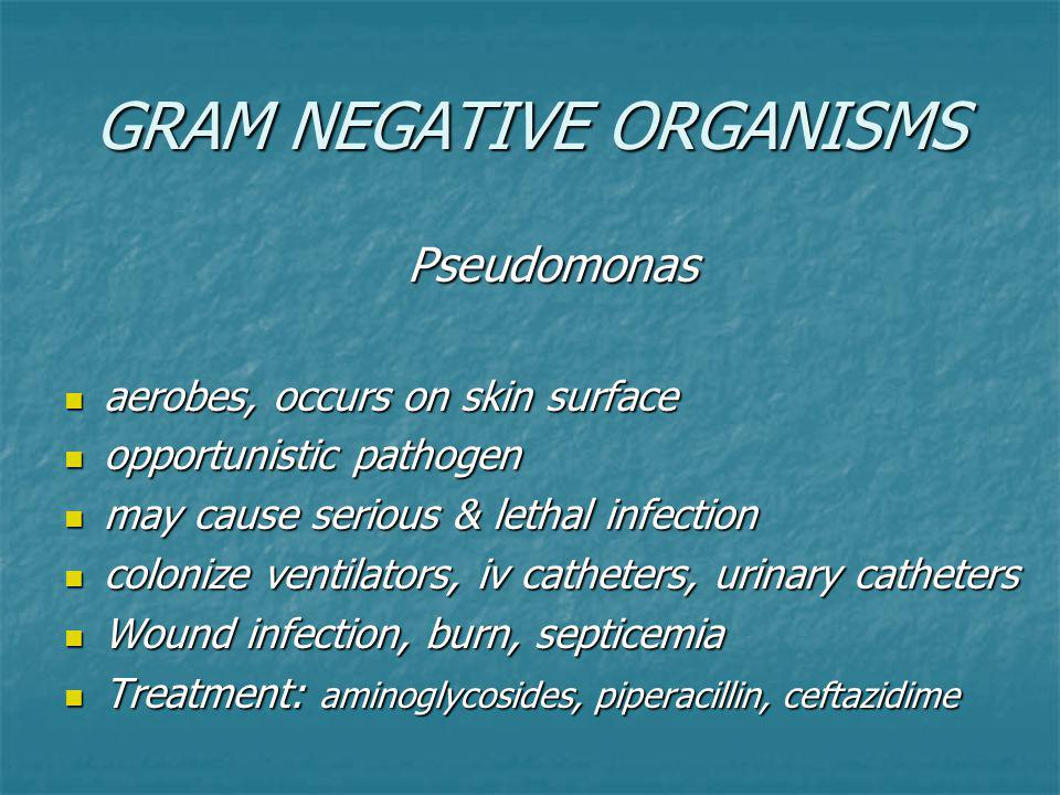 GRAM NEGATIVE ORGANISMS Pseudomonas Pseudomonas aerobes, occurs on skin surface aerobes, occurs on skin surface opportunistic pathogen opportunistic pathogen may cause serious & lethal infection may cause serious & lethal infection colonize ventilators, iv catheters, urinary catheters colonize ventilators, iv catheters, urinary catheters Wound infection, burn, septicemia Wound infection, burn, septicemia Treatment: aminoglycosides, piperacillin, ceftazidime Treatment: aminoglycosides, piperacillin, ceftazidime