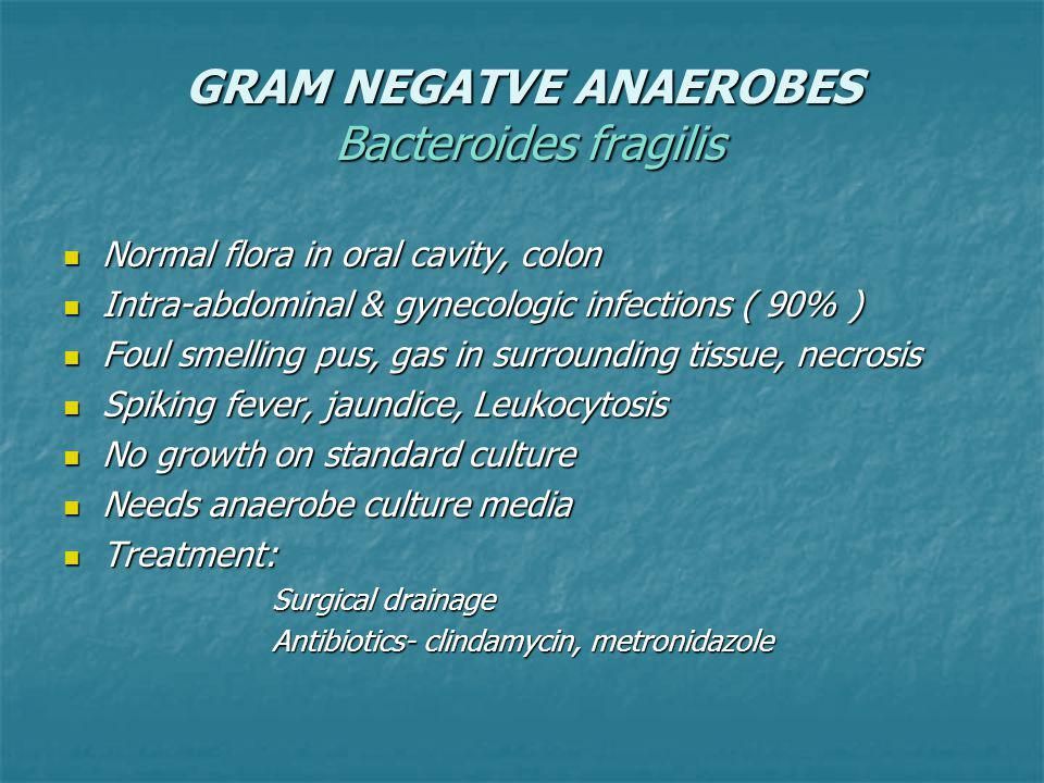 GRAM NEGATVE ANAEROBES Bacteroides fragilis Normal flora in oral cavity, colon Normal flora in oral cavity, colon Intra-abdominal & gynecologic infections ( 90% ) Intra-abdominal & gynecologic infections ( 90% ) Foul smelling pus, gas in surrounding tissue, necrosis Foul smelling pus, gas in surrounding tissue, necrosis Spiking fever, jaundice, Leukocytosis Spiking fever, jaundice, Leukocytosis No growth on standard culture No growth on standard culture Needs anaerobe culture media Needs anaerobe culture media Treatment: Treatment: Surgical drainage Antibiotics- clindamycin, metronidazole