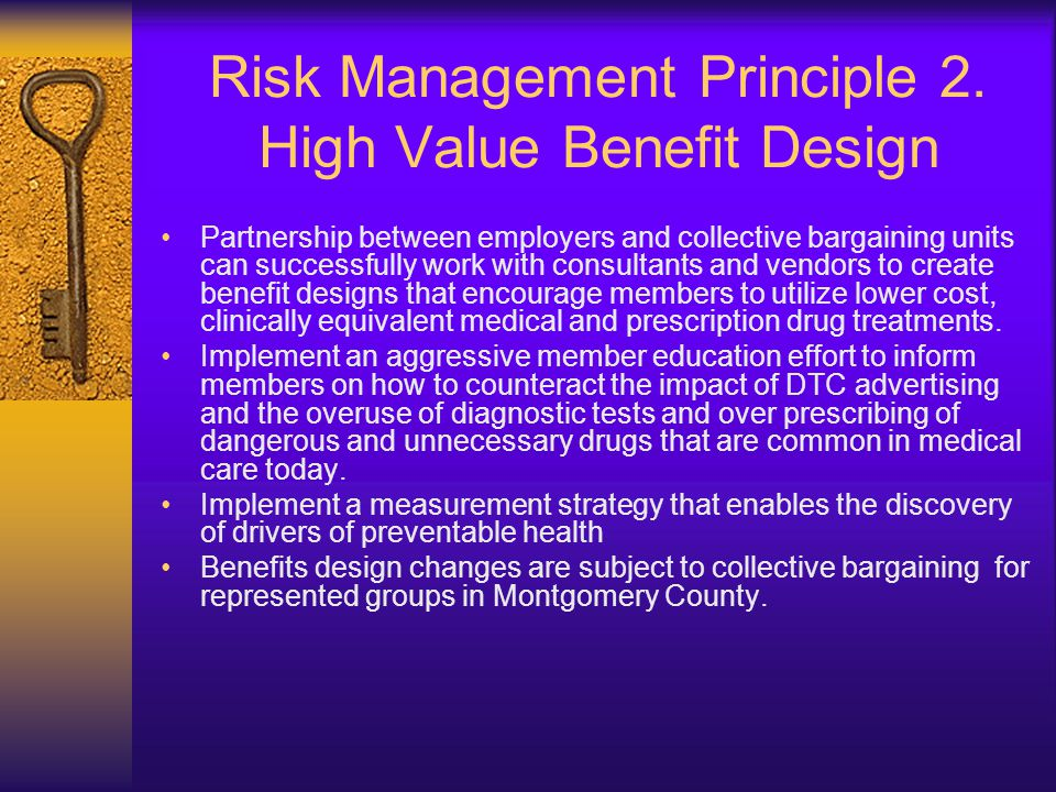 Risk Management Principle 3.