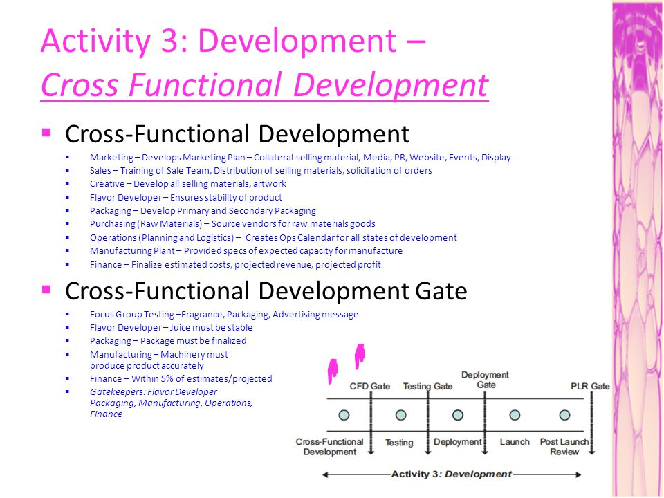 Activity 3: Development – Cross Functional Development Cross-Functional Development Marketing – Develops Marketing Plan – Collateral selling material, Media, PR, Website, Events, Display Sales – Training of Sale Team, Distribution of selling materials, solicitation of orders Creative – Develop all selling materials, artwork Flavor Developer – Ensures stability of product Packaging – Develop Primary and Secondary Packaging Purchasing (Raw Materials) – Source vendors for raw materials goods Operations (Planning and Logistics) – Creates Ops Calendar for all states of development Manufacturing Plant – Provided specs of expected capacity for manufacture Finance – Finalize estimated costs, projected revenue, projected profit Cross-Functional Development Gate Focus Group Testing –Fragrance, Packaging, Advertising message Flavor Developer – Juice must be stable Packaging – Package must be finalized Manufacturing – Machinery must produce product accurately Finance – Within 5% of estimates/projected Gatekeepers: Flavor Developer Packaging, Manufacturing, Operations, Finance