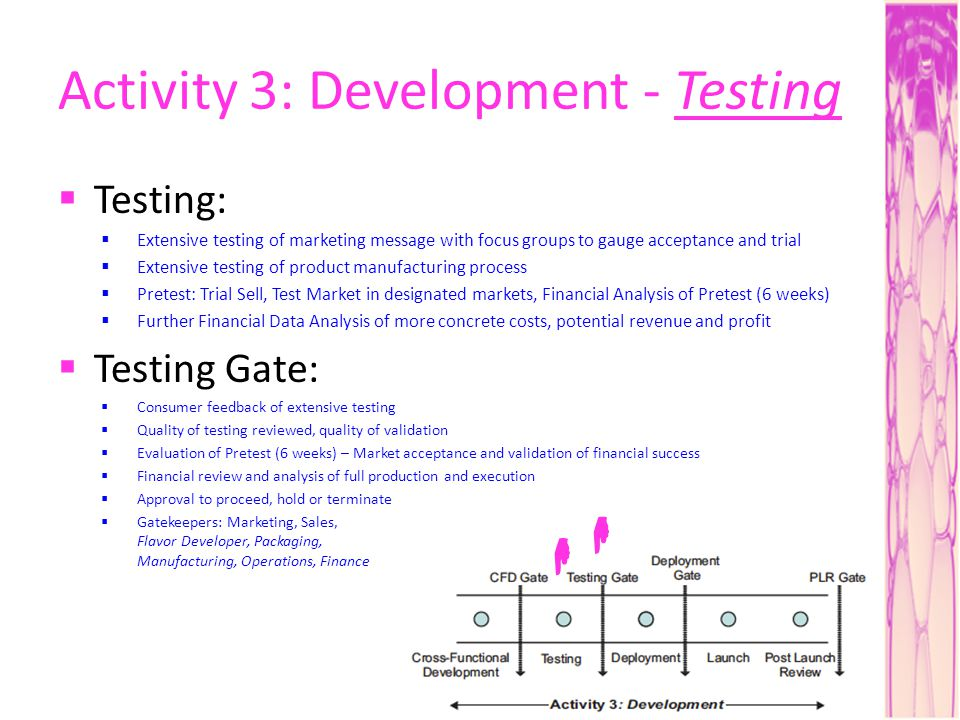 Activity 3: Development - Testing Testing: Extensive testing of marketing message with focus groups to gauge acceptance and trial Extensive testing of product manufacturing process Pretest: Trial Sell, Test Market in designated markets, Financial Analysis of Pretest (6 weeks) Further Financial Data Analysis of more concrete costs, potential revenue and profit Testing Gate: Consumer feedback of extensive testing Quality of testing reviewed, quality of validation Evaluation of Pretest (6 weeks) – Market acceptance and validation of financial success Financial review and analysis of full production and execution Approval to proceed, hold or terminate Gatekeepers: Marketing, Sales, Flavor Developer, Packaging, Manufacturing, Operations, Finance