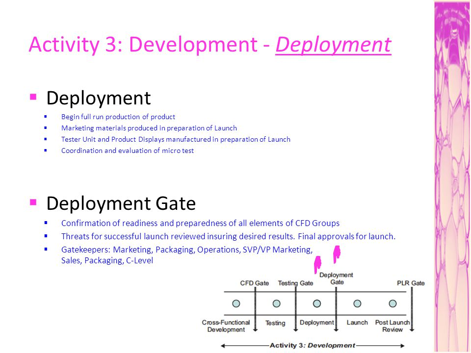 Activity 3: Development - Deployment Deployment Begin full run production of product Marketing materials produced in preparation of Launch Tester Unit