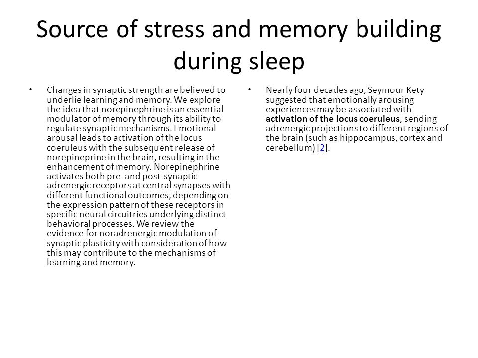 Source of stress and memory building during sleep Changes in synaptic strength are believed to underlie learning and memory. We explore the idea that