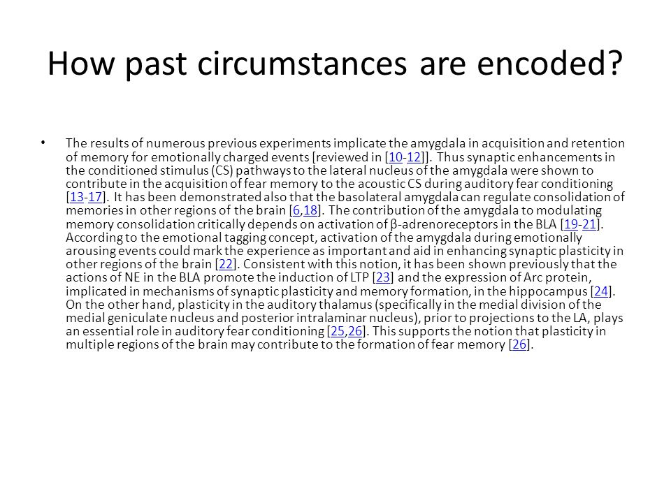 How past circumstances are encoded? The results of numerous previous experiments implicate the amygdala in acquisition and retention of memory for emo