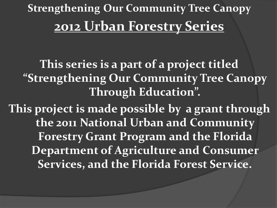 Strengthening Our Community Tree Canopy 2012 Urban Forestry Series This series is a part of a project titled Strengthening Our Community Tree Canopy T