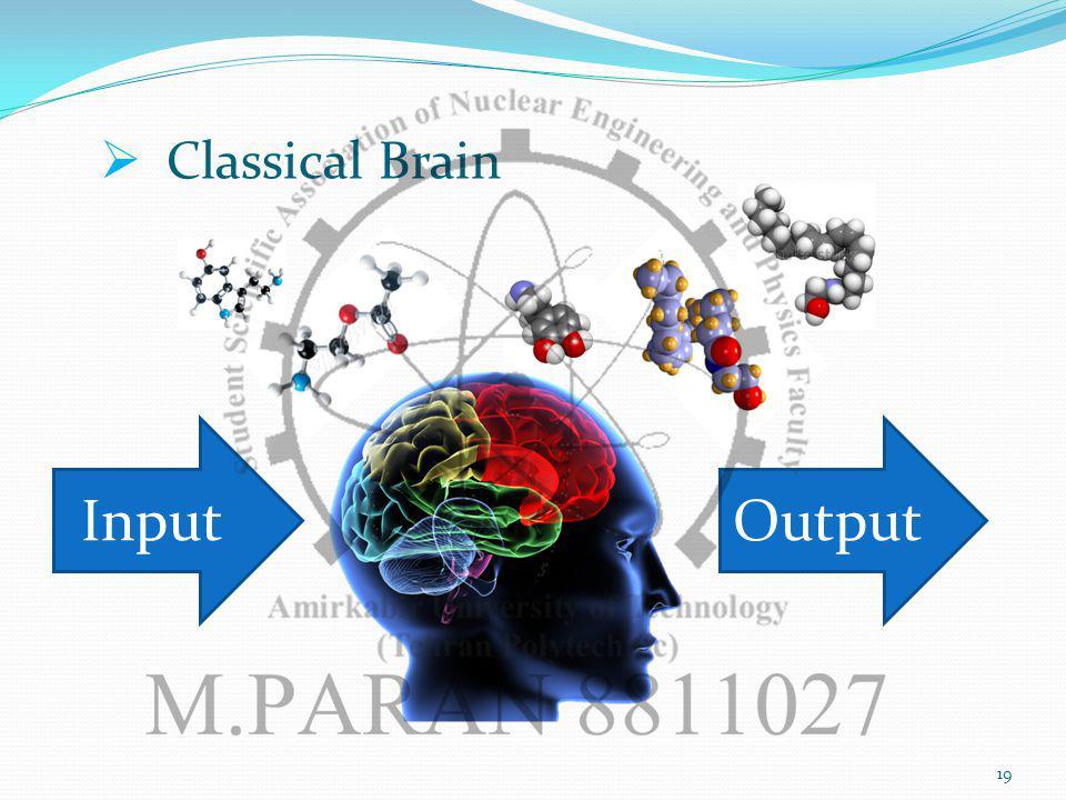 19 Classical Brain InputOutput