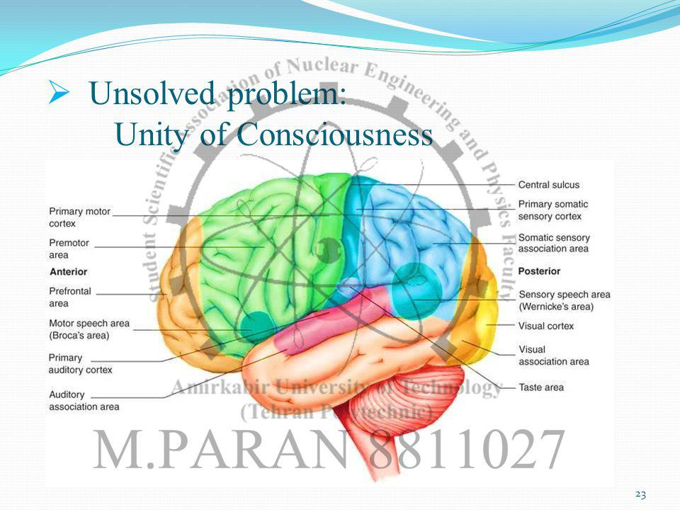Unsolved problem: Unity of Consciousness 23