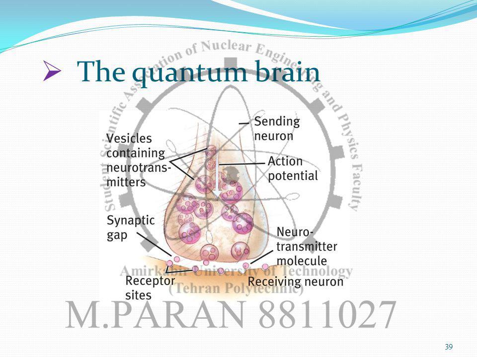 The quantum brain 39