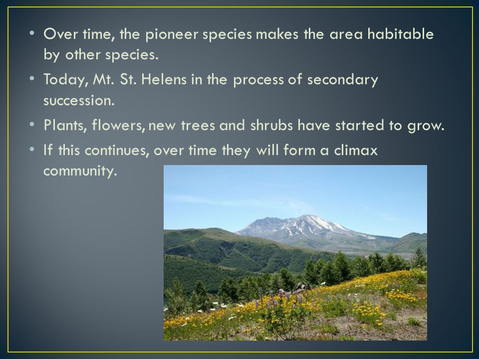 Over time, the pioneer species makes the area habitable by other species.