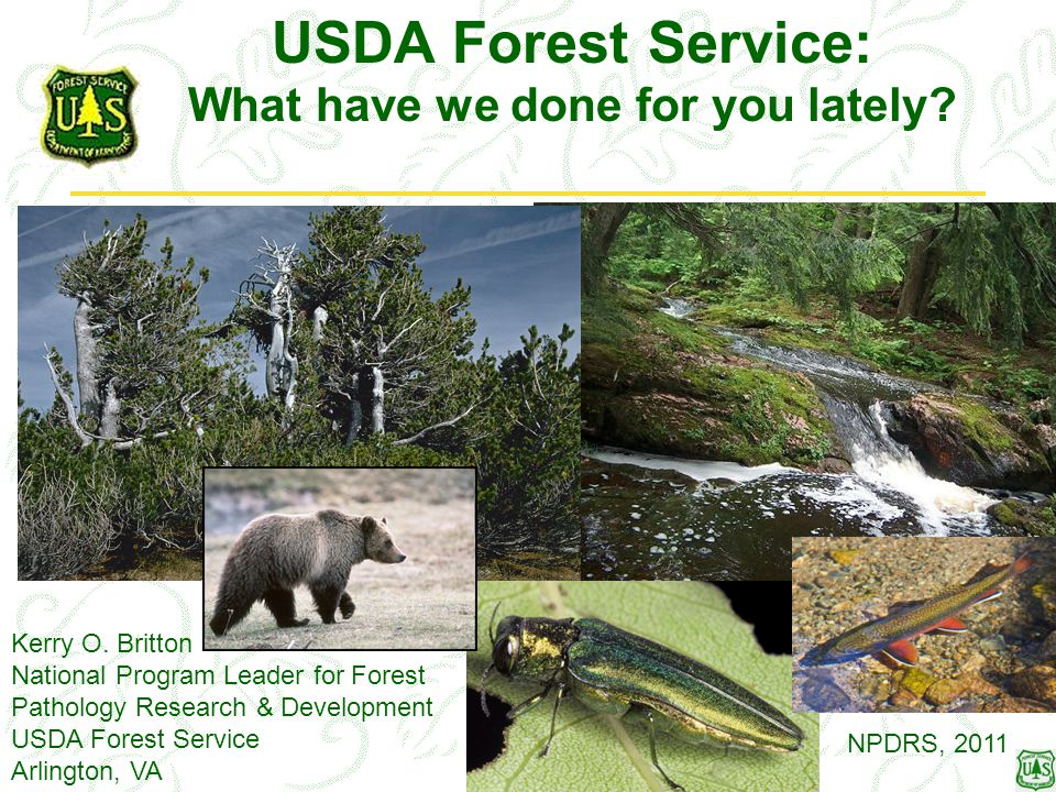 USDA Forest Service: What have we done for you lately? Kerry O. Britton National Program Leader for Forest Pathology Research & Development USDA Fores