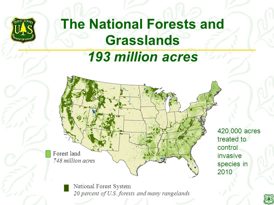 National Forest System 20 percent of U.S.