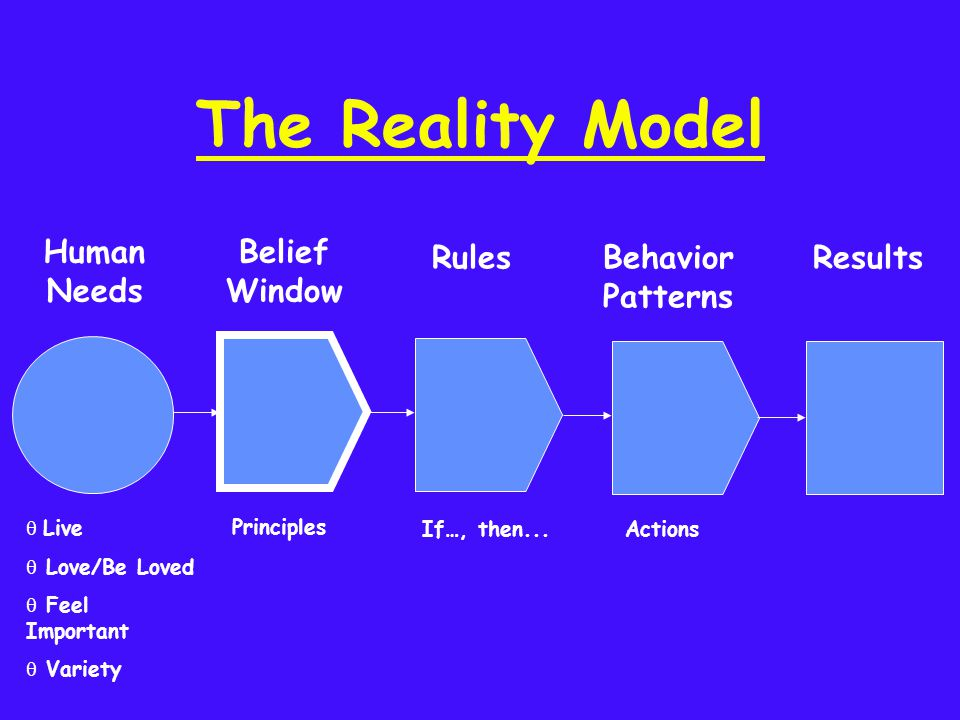 The Reality Model Actions If…, then... Principles Behavior Patterns Results Belief Window q Live q Love/Be Loved q Feel Important q Variety Human Need