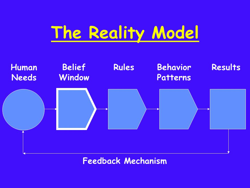 The Reality Model Human Needs Belief Window RulesBehavior Patterns Results Feedback Mechanism