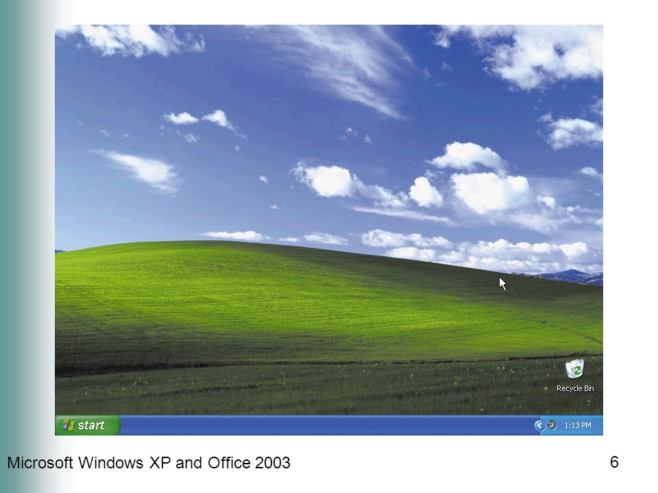 Microsoft Windows XP and Office