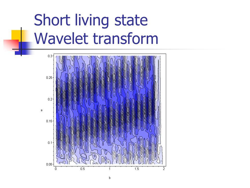 Short living state Wavelet transform
