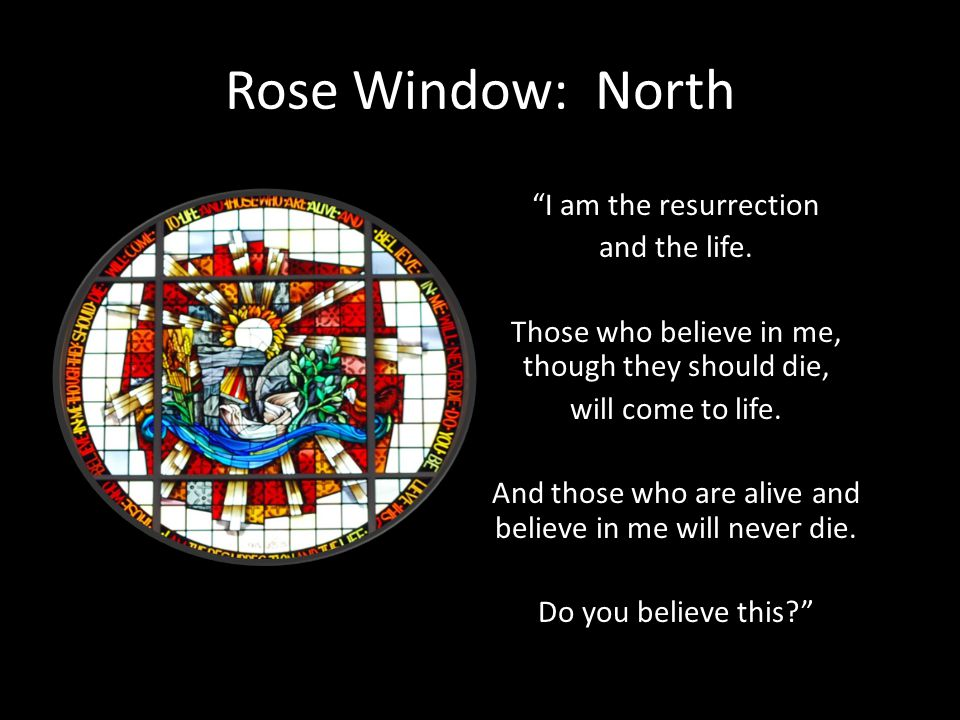 Rose Window: North I am the resurrection and the life. Those who believe in me, though they should die, will come to life. And those who are alive and